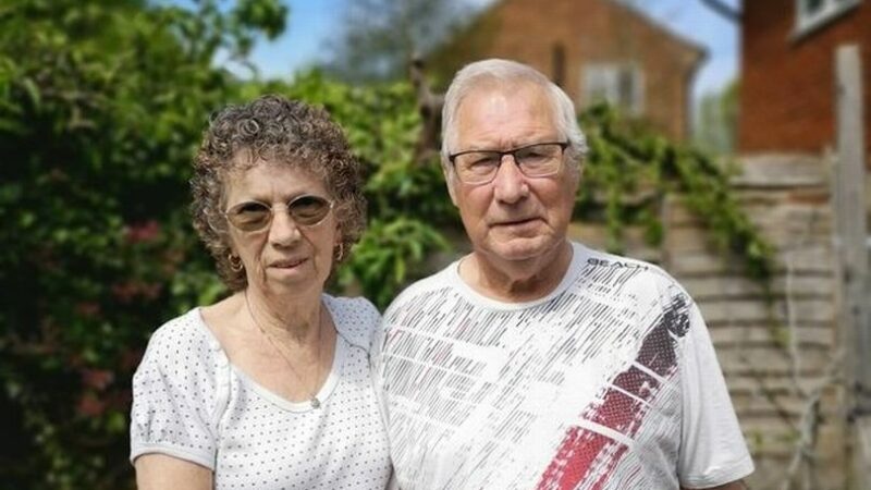Granddad says beekeeping neighbours 'use insects as weapons' leaving family in fear